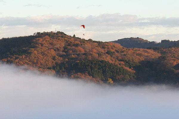 雲海パラグライダー